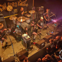 Dog Eat Dog - poppodium NIEUWE NOR